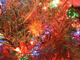 Christmas Tree, door Stephen Butler, via Flickr.